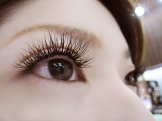 image-eyelash3